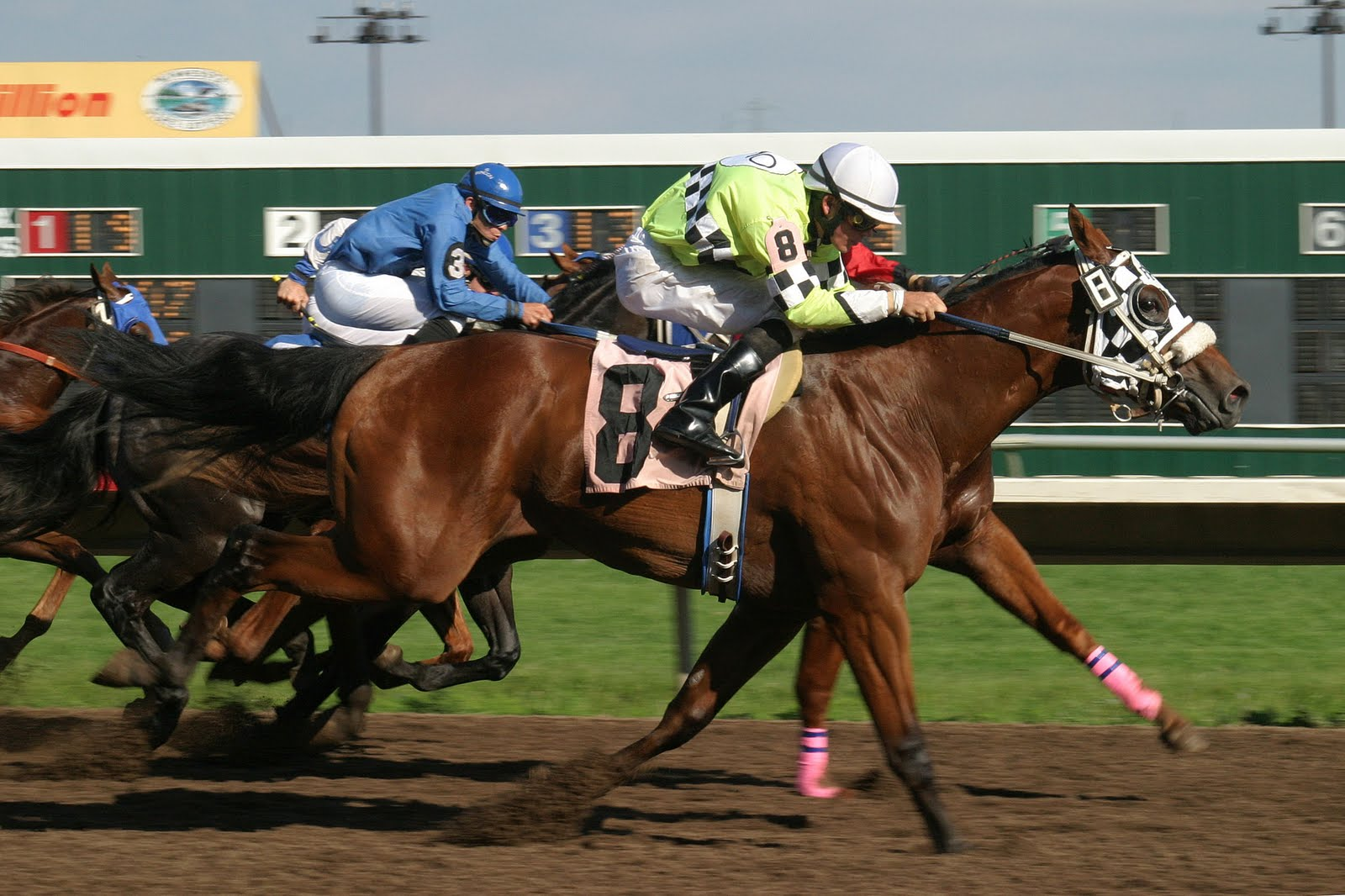 fast horse racing results
