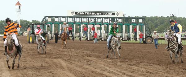 2013 Zebra Race