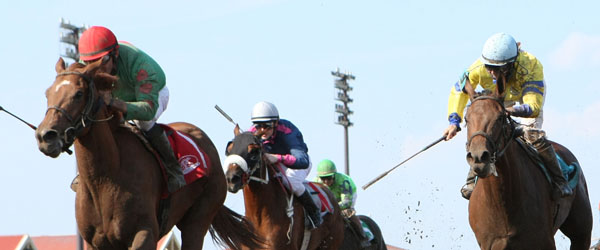 Badge Of Glory - Frances Genter Stakes - 07-04-13 - R08 - CBY - Under Rail Finish