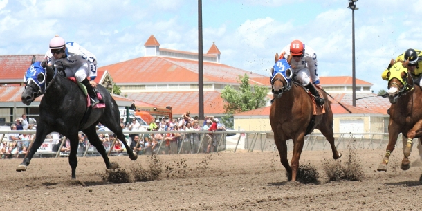 BHR Guys Flash Me - Minnesota Stallion Breeders' Quarter Horse Futurity - 06-29-14