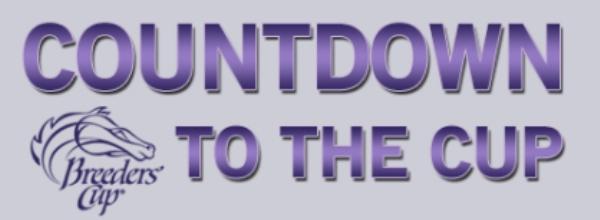 bc_countdown2014_header