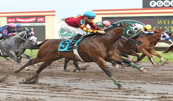 Runnin Red Barron - Ry Eikleberry All Time Leading Quarter Horse Rider at Canterbury Park - 06-04-15 - R02 - CBY 002
