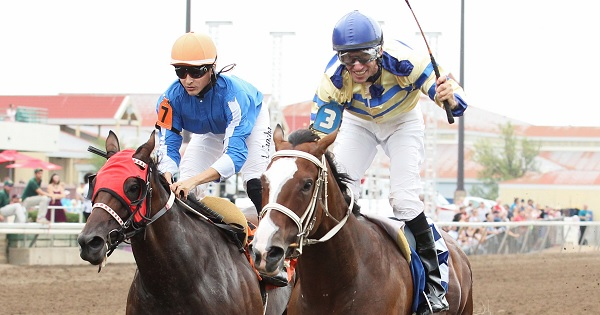 Alex Canchari and Gypsy Melody (Left) are defeated by Scott Stevens and Rockin the Bleu's in the Distaff Sprint