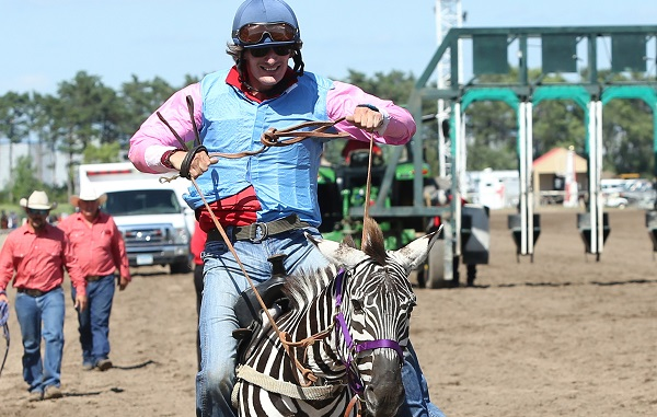 Extreme Day Zebras