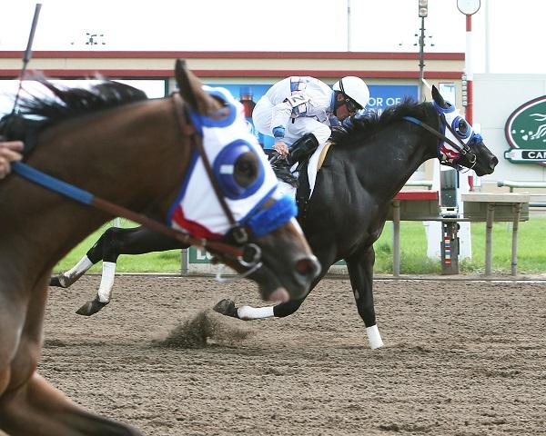 VODKA AT MOONLIGHT - Minnesota Quarter Horse Futurity - 08-21-16 - R01 - CBY - Finish