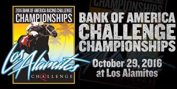 challenge-aqha